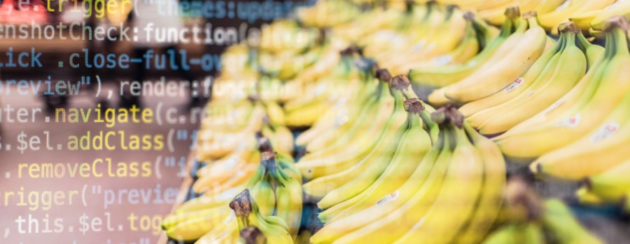 Lessons from the Morrisons data breach ruling